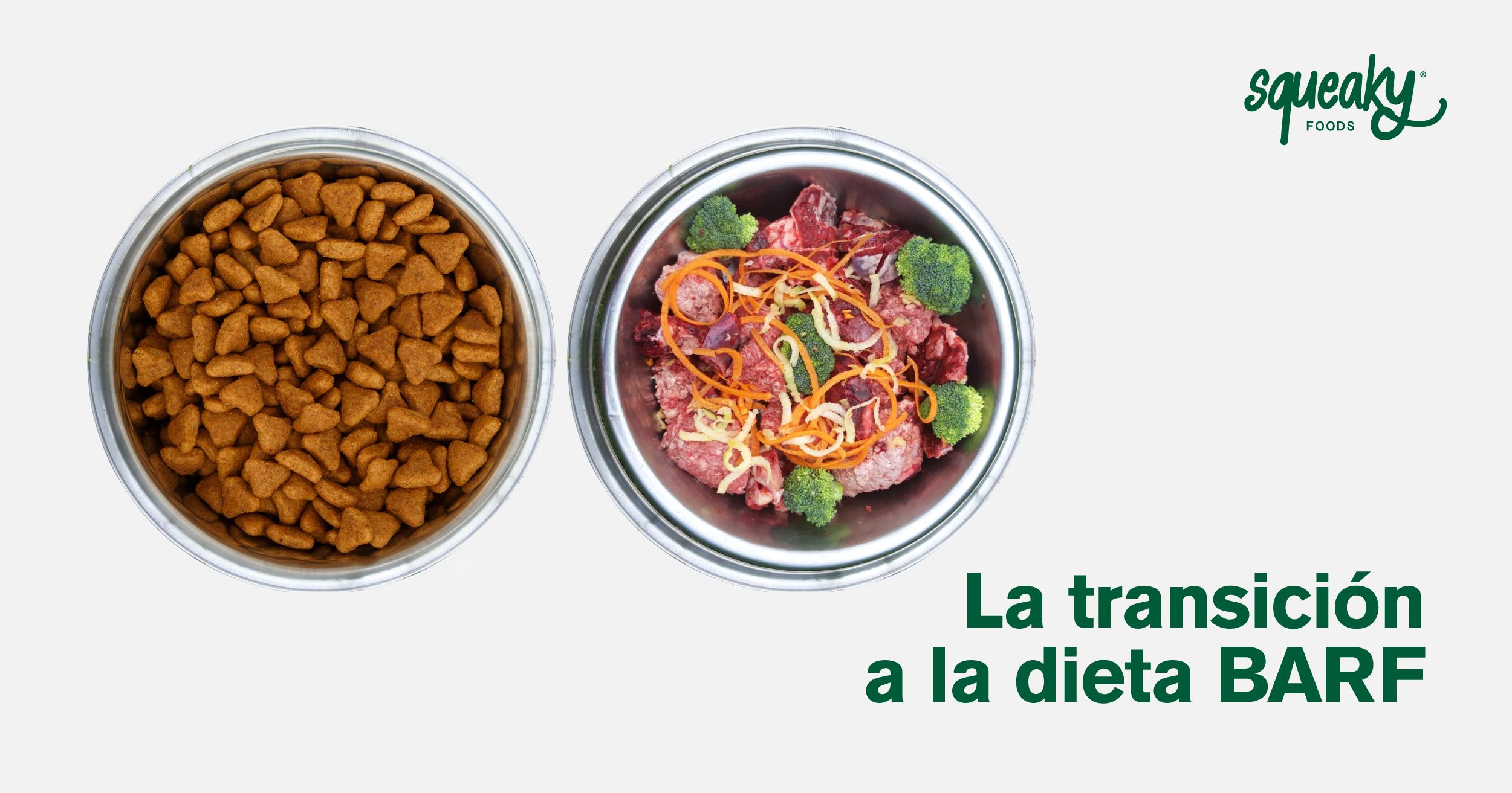¿Cómo hacer la transición a la dieta BARF?